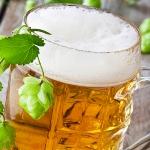 alkohol - pivo v pohari