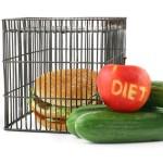 jedálniček - hamburger v klietke